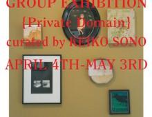 Private Domain (2010)